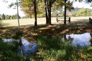 鈴の森公園(松阪市松阪市外五曲町)