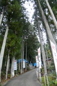 「祝 船木区」の幟が立つ船木神社の参道(度会郡大紀町船木)