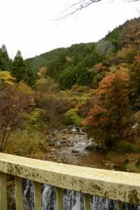 舟戸街道橋から望む櫛田川の上流側