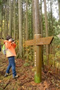 高見山を越えるみち「トイレ1200m・大二木茶屋跡400m」(近畿自然歩道)の道標