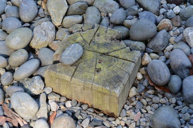 丸っぽい石まで姿を消した大庭の隅の木杭(外宮)