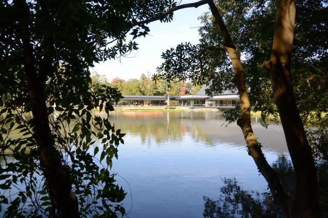 茜社の参道から望む外宮勾玉池および休憩舎、式年遷宮記念 せんぐう館