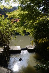 外宮勾玉池(茜社の西側の参道入口付近)