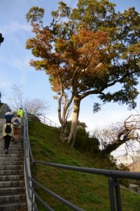 鳥羽城三ノ丸跡から城山公園へ