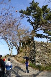 鳥羽城本丸跡の石垣付近