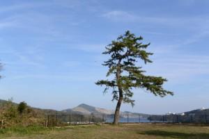 鳥羽城本丸跡から遠望した菅島