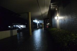 乱歩ナイト3の会場(真珠博物館)付近(ミキモト真珠島)