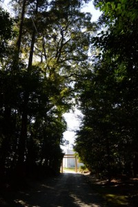 神麻続機殿神社・同社末社八所(皇大神宮所管社)