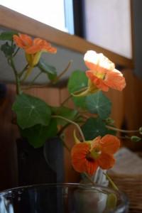 旬菜 野の花亭