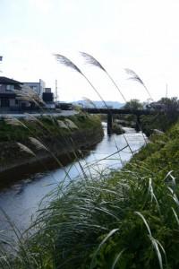 外城田川(外城田橋〜極楽橋)