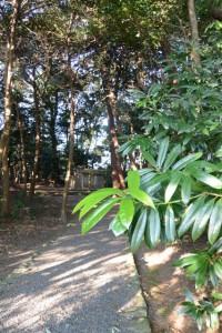 鴨下神社(皇大神宮末社)