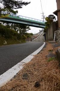 甲子橋付近(大王町波切)