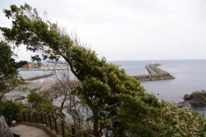 崎山公園(大王町波切)〜(4)八大竜王碑