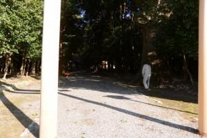 清掃作業の開始(神服織機殿神社)