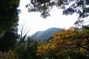 多岐原神社(皇大神宮摂社)付近の風景