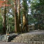 清掃作業(多岐原神社)