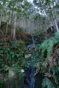 滝(船木神社からさらに上)