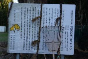 「三重県指定天然記念物 七保のお葉つきイチョウ」の説明板