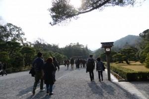 内宮の参道(神苑付近)