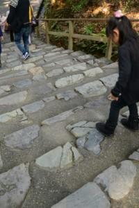 踏まぬ石付近(荒祭宮への石段)