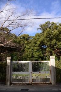 東側の開かず(?)の門(月夜見宮)