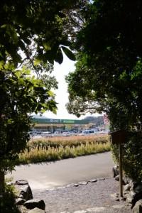 階段下からの風景(田上大水神社)