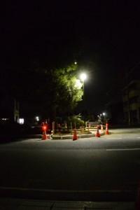 JR山田上口駅前、クスノキの並木道