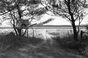 柏原海岸への道