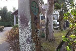 専念寺(鹿児島県肝属郡東串良町)