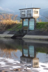 塩入川(柏原橋〜第一有明橋)