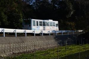 神津佐海水浴場付近のアオサ養殖網(度会郡南伊勢町下津浦)