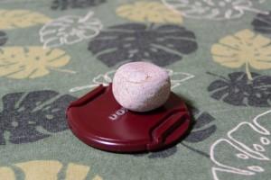 宿浦で見つけたサイコロ状の小石