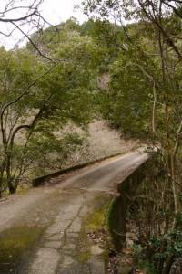 河内ダム〜鳥羽河内川上流部にある棚田跡