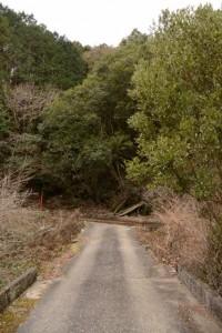 鳥羽河内川上流部にある棚田跡への分岐(丁字路、右)