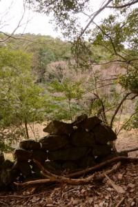 分岐〜鳥羽河内川上流部にある棚田跡