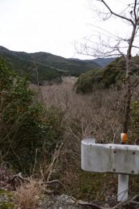 河内ダム付近から遠望した鳥羽河内川上流部にある棚田跡