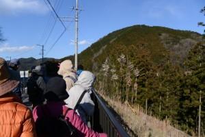 幽霊岩付近(県道38号)