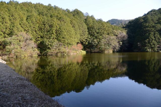 山田新池(玉城町山神)