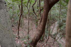 切り通し付近、峠の上に建つ石灯籠の一部:伊勢本街道 (2)土羽茶屋 13
