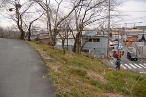 宮川右岸堤防からの階段