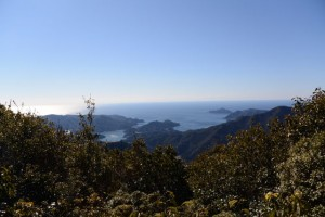 野見坂西峰からの眺望