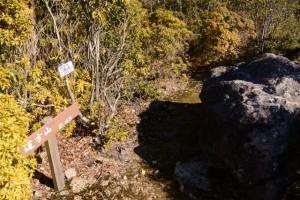 「道方山 2.4km」の道標、「野見坂西峰 508m」の山頂標
