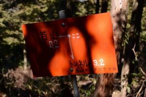 「若山0.2←→トンネル3.2」の道標