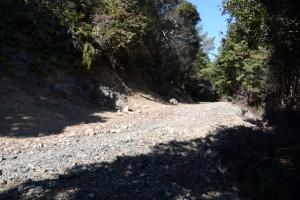昇龍の滝付近からの山道と合流した林道(道方山方向)