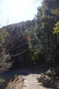 道方山へと続く林道を能見坂峠方向へ
