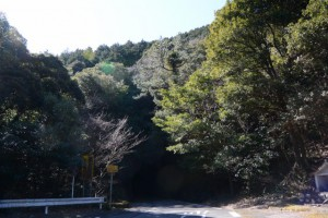 野見坂隧道の北側