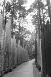巨大な塔婆が立てられている奥之院への参道(金剛證寺)