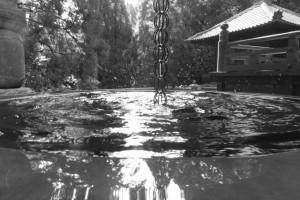 本堂の雨水桶(金剛證寺)