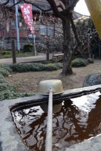 菅原神社の手水石から望む一臥竜梅(新開臥竜梅公園)