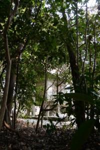 小俣神社(豊受大神宮 摂社)から望む隣の八柱神社